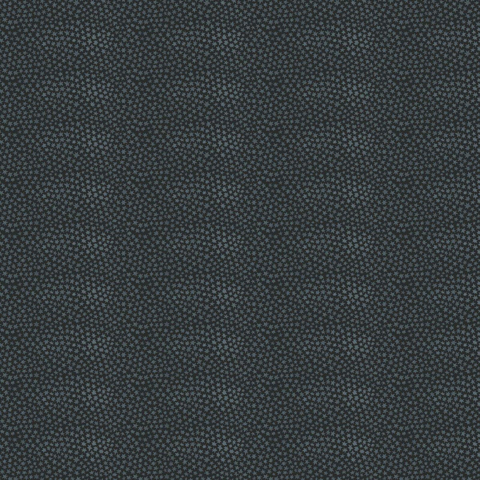 Winter Frost by Boccaccini Meadows for Figo Fabrics - Stars - Black