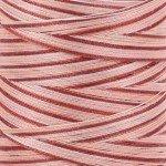 Aurifil Cotton Mako 40 wt Thread 1094 yards  Variegated - Cinnamon Sugar #4656