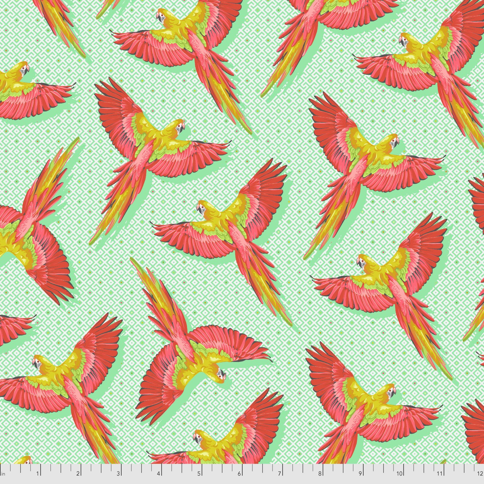 Pre-Order - Daydreamer by Tula Pink for Free Spirit Fabrics - Macaw Ya Later - Mango