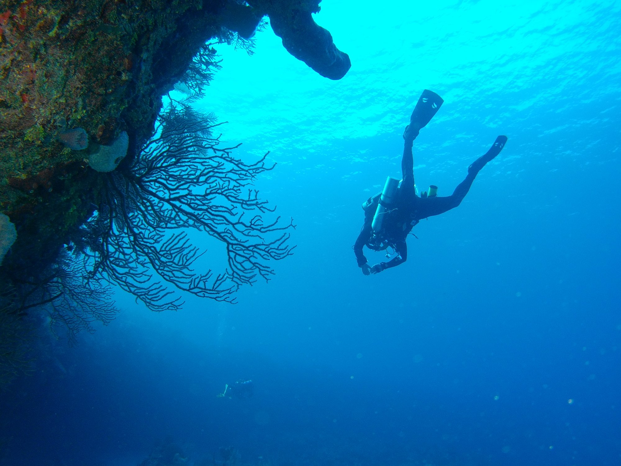 Get Certified in Grand Cayman