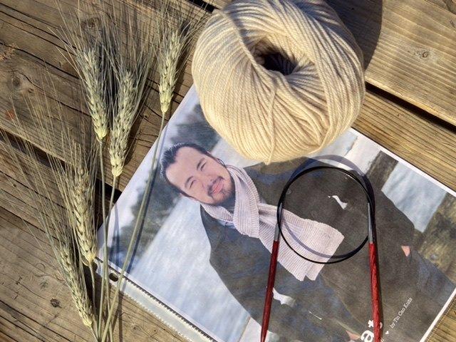 Learn to Knit Starter Kit