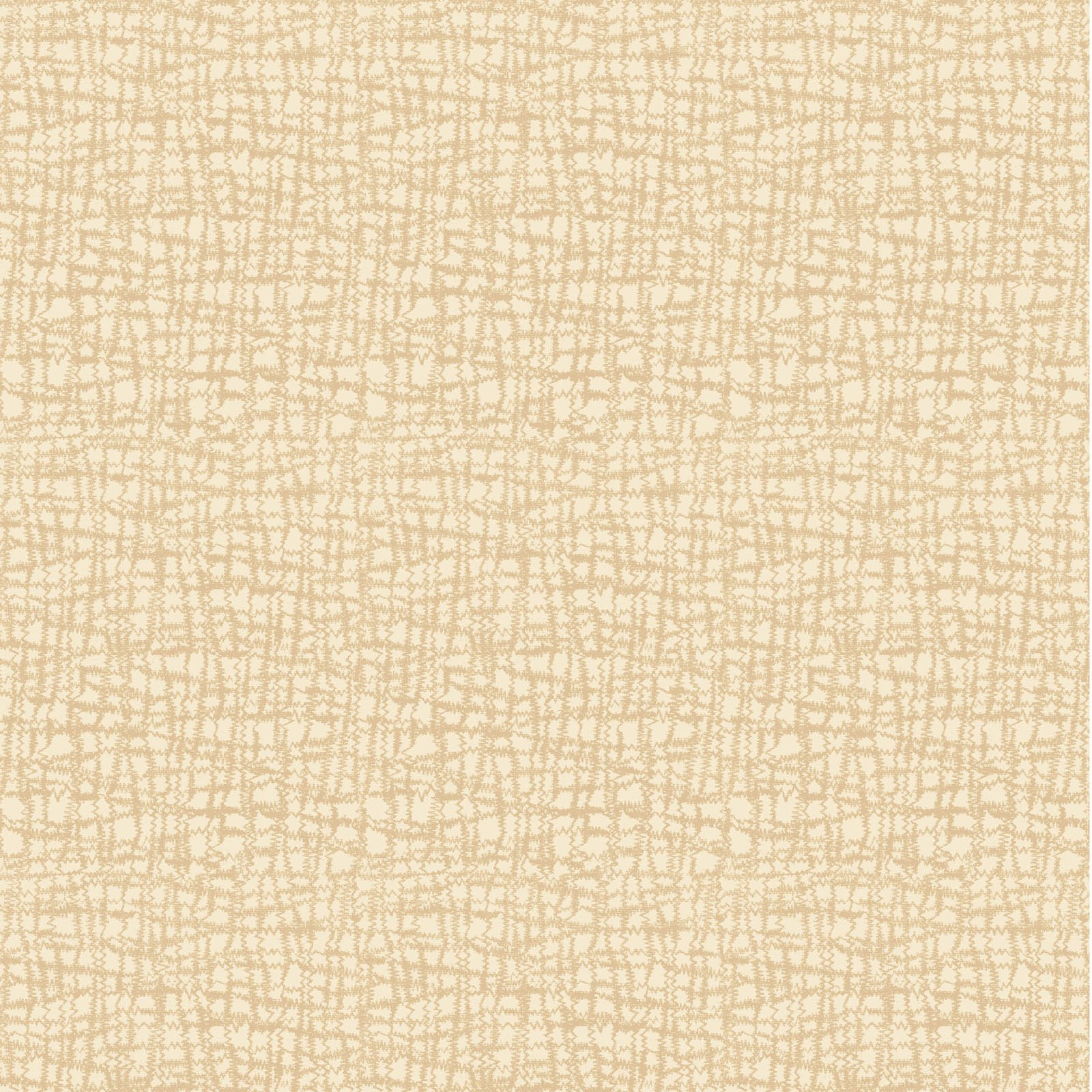 AC17-3129 W - APPLE CIDER 17 BY P&B BOUTIQUE TEXTURE WHITE
