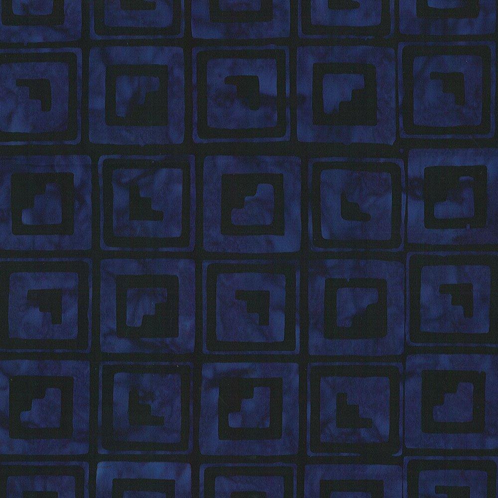 CABA-1065 998 - STEPPING UP BY SHANIA SUNGA BLACK PURPLE