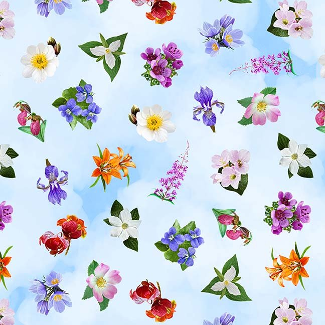 CASS-DC4013  - GLORIOUS & FREE BY SHANIA SUNGA FLORAL TOSSED WHITE BLUE MULTI -  ARRIVING IN APRIL 2021