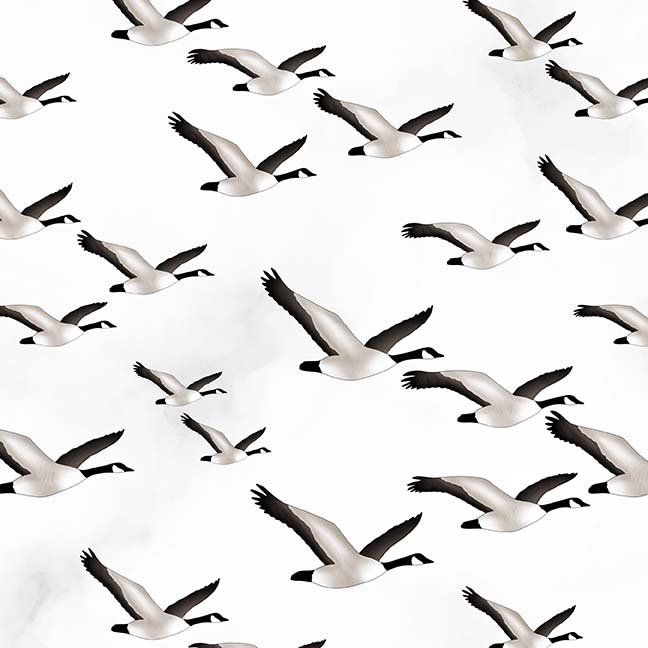 CASS-DC4014 - GLORIOUS & FREE BY SHANIA SUNGA CANADA GEESE ON WHITE GREY -  ARRIVING IN APRIL 2021
