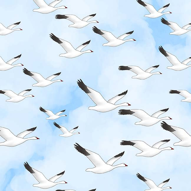 CASS-DC4015 - GLORIOUS & FREE BY SHANIA SUNGA SNOW GEESE ON WHITE BLUE -  ARRIVING IN APRIL 2021