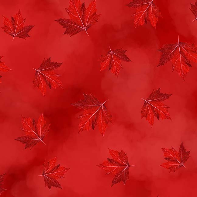 CASS-DC5012 R35 - BREEZE BY SHANIA SUNGA MAPLE LEAVES RED -  ARRIVING IN APRIL 2021