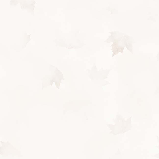 CASS-DC5013 N122 - MISTY BY SHANIA SUNGA CLOUDS & LEAVES CREAM - ARRIVING IN MAY 2021