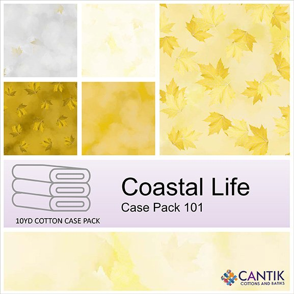 CASS-CPFB06 101 - COASTAL LIFE CASE PACK BY SHANIA SUNGA 6 PCS 9.1 MT BOLTS YELLOW- DELIVERY OCTOBER 2021