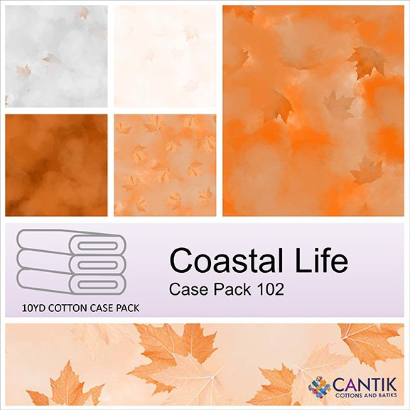 CASS-CPFB06 102 - COASTAL LIFE CASE PACK BY SHANIA SUNGA 6 PCS 9.1 MT BOLTS ORANGE - DELIVERY OCTOBER 2021