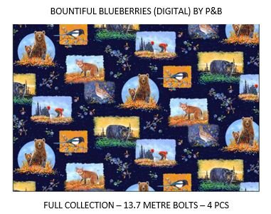 CSMD-CPFB BBLU - BOUNTIFUL BLUEBERRIES CASE PACK 13.7MT/BOLT x 4SKUS - ARRIVING IN JUNE 2021