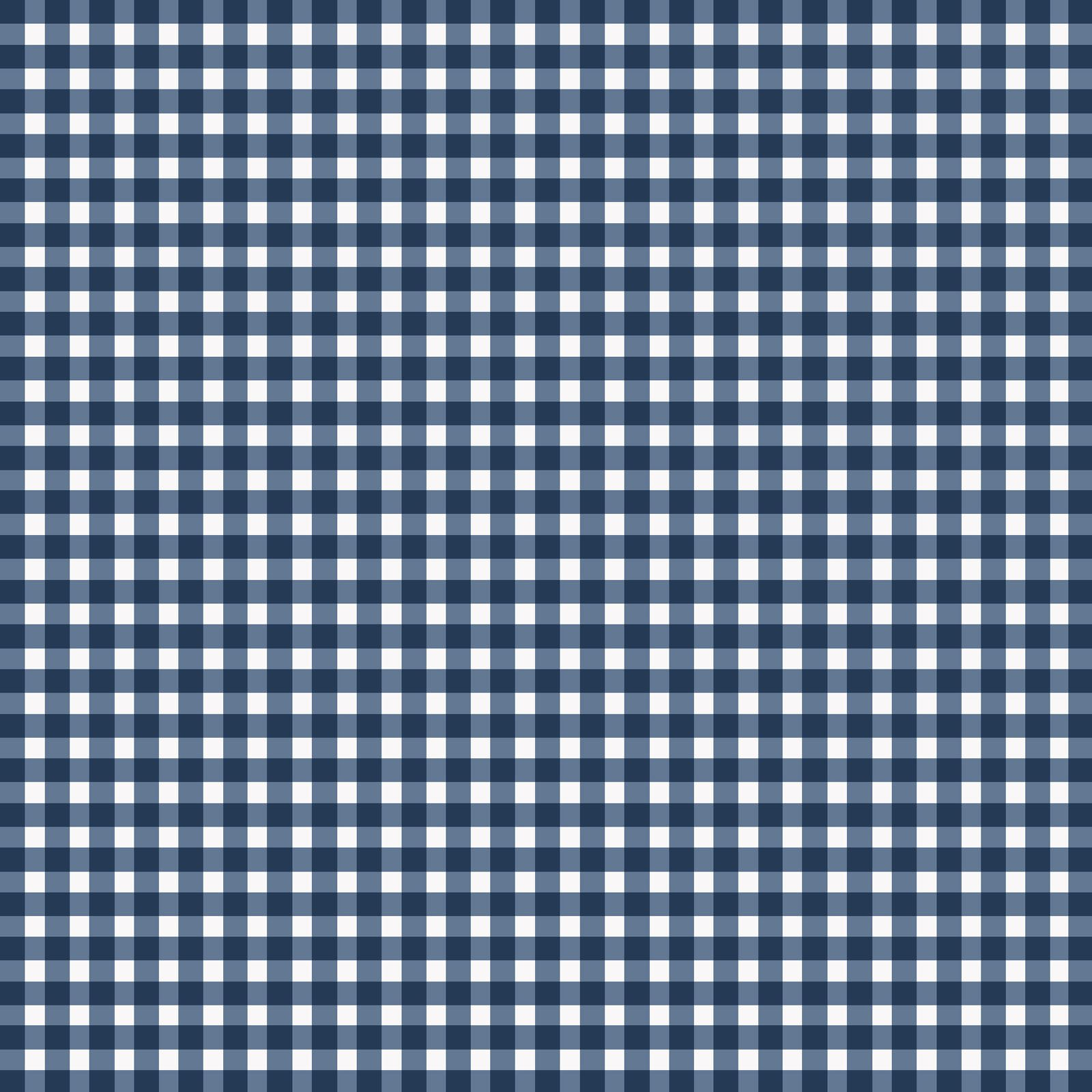 EESC-610 N3 - BEAUTIFUL BASICS BY MAYWOOD STUDIO CLASSIC CHECK RICH NAVY