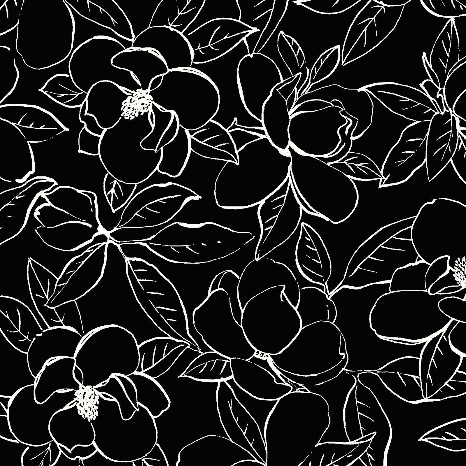 MAGN-4253 KW - MAGNOLIAS BY SANDY CLOUGH OUTLINES BLK/WHI