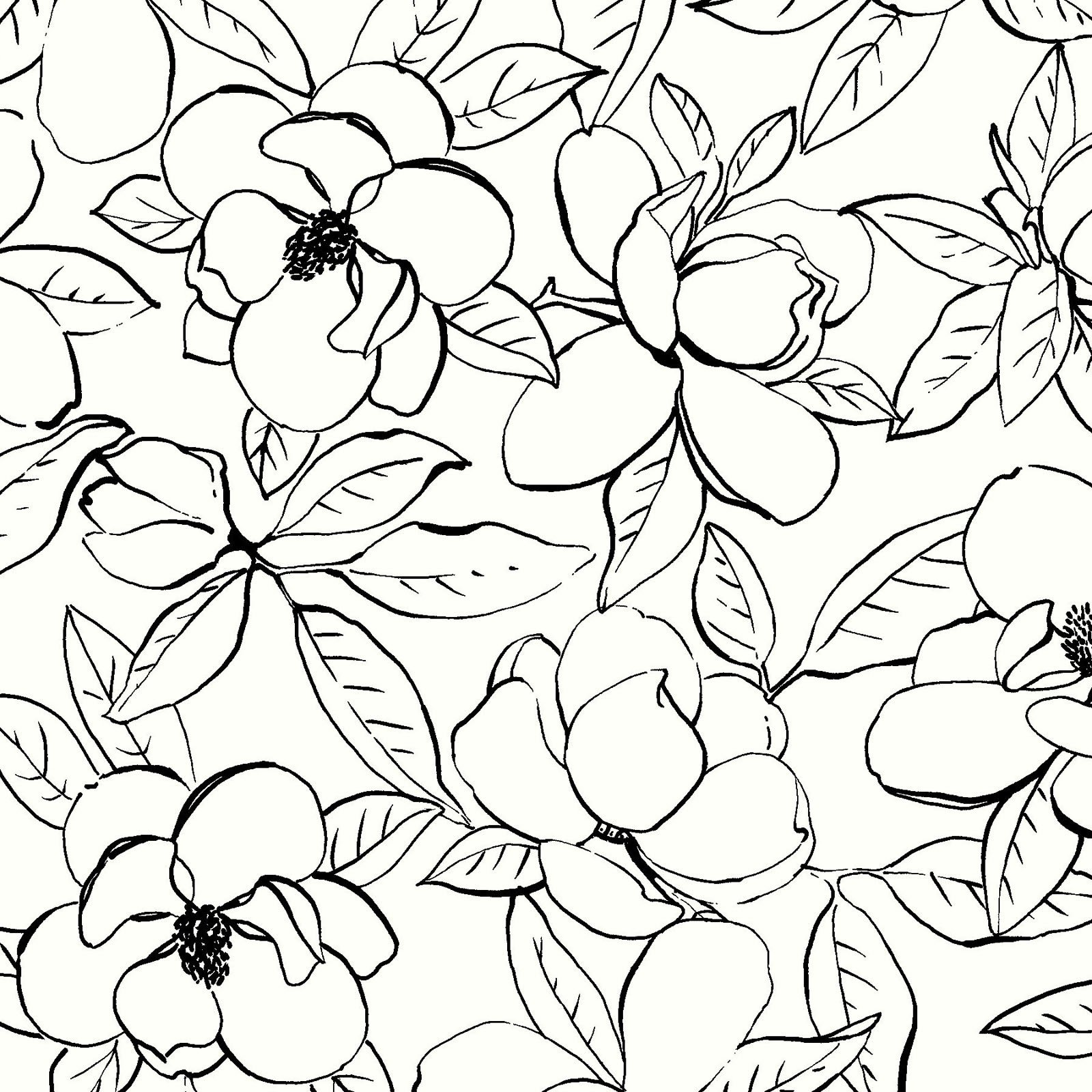 MAGN-4253 WK - MAGNOLIAS BY SANDY CLOUGH OUTLINES WHI/BLK