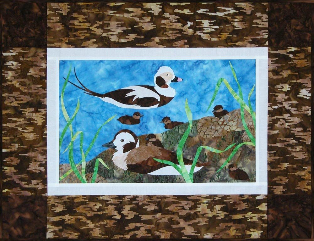 SHAN-142 - LONG-TAILED DUCK BY SHANIA SUNGA