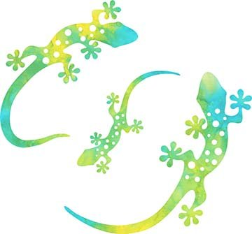 SHAN-LC001 04 - GECKO LASER CUTS BY SHANIA SUNGA 5&6.5&8/PKG BLUE GREEN YELLOW