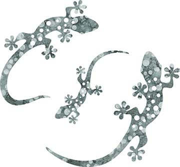 SHAN-LC001 07 - GECKO LASER CUTS BY SHANIA SUNGA 5&6.5&8/PKG GREY