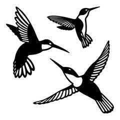 SHAN-LC002 - HUMMINGBIRD LASER CUTS BY SHANIA SUNGA 5&6.5&8/PK BLK BAT