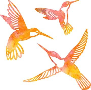 SHAN-LC002 01 - HUMMINGBIRD LASER CUTS BY SHANIA SUNGA 5&6.5&8/PKG ORANGE PINK YEL