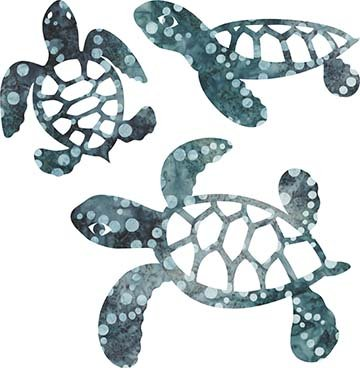 SHAN-LC005 09 - TURTLE LASER CUTS BY SHANIA SUNGA 5&6.5&8/PKG TURQUOISE GREY