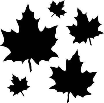 SHAN-LC036 - MAPLE LEAVES LASER CUT BY SHANIA SUNGA 2 to 7 BLACK