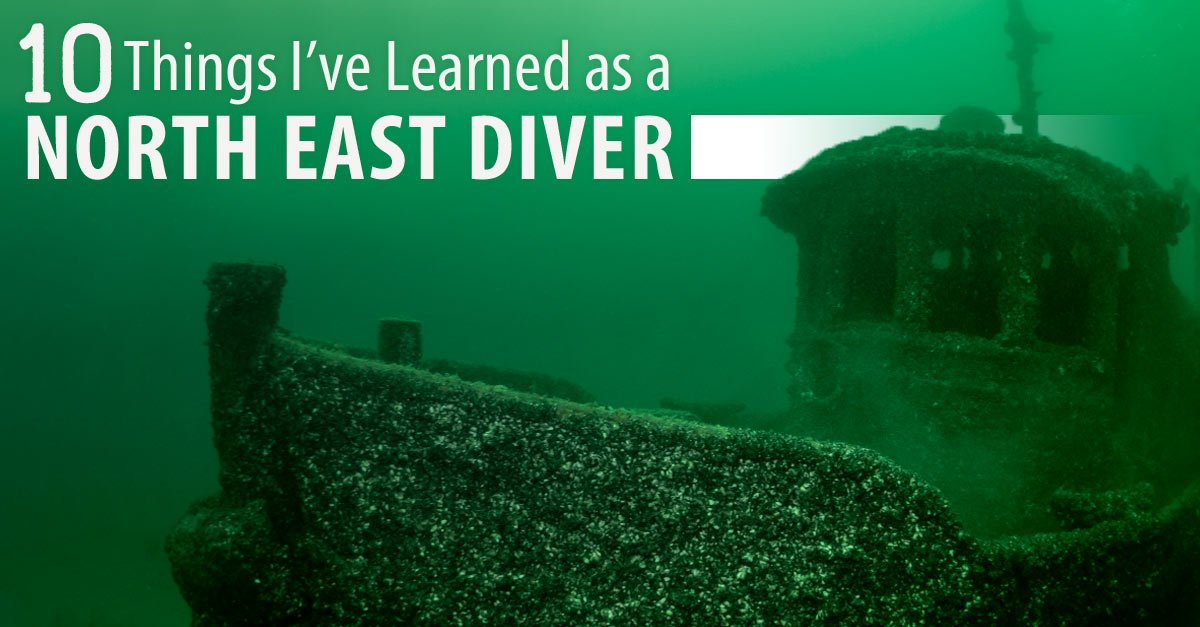 A smart diver is always learning
