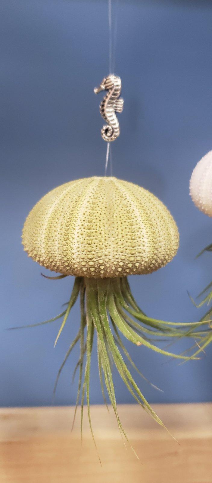 Jellyfish Ornaments