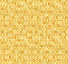 Love of Bees Honeycomb