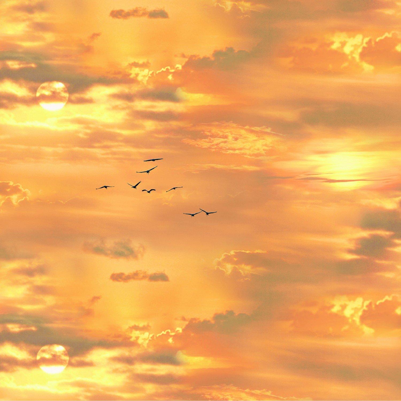Gold Sunset Sky