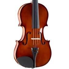 Palatino Violin Outfit 4/4 - VN-350