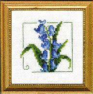 Bluebell Carolyn's Garden Kit