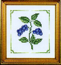 Blueberries Charmers Kit