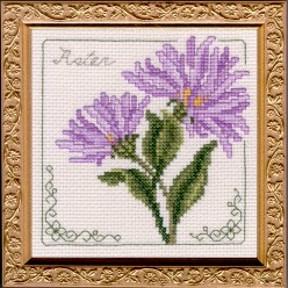 Aster Floral Elegance Kit