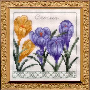 Crocus Floral Elegance Kit