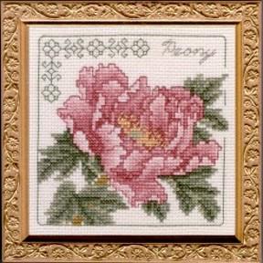 Peony Floral Elegance Kit