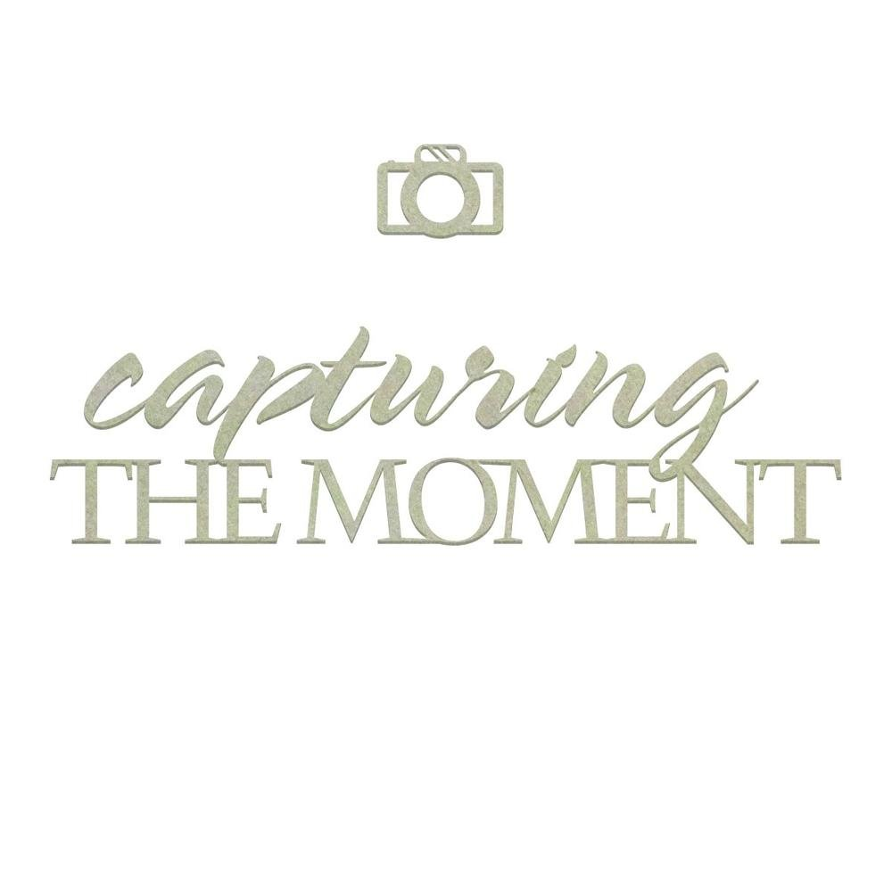 Chipboard - CO - Capturing the Moment Set (2pc)