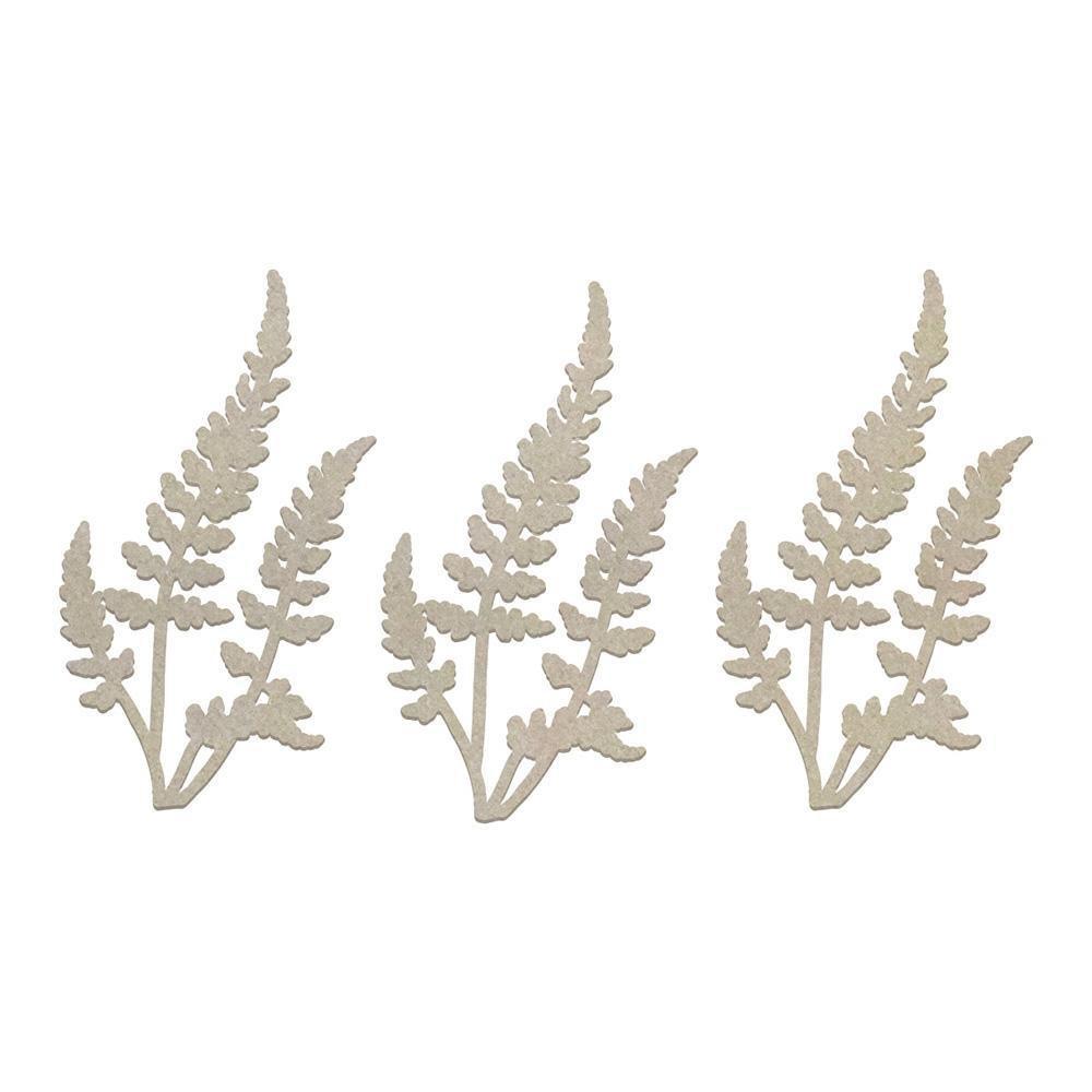 Chipboard - CLV - 3 Ferns Set (3pc)