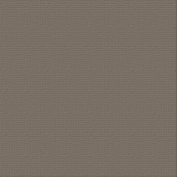 Cardstock - 12x12 - Hippodrome (250gsm)