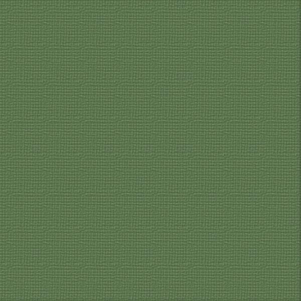 Cardstock - 12x12 - Cypress Pine (250gsm)
