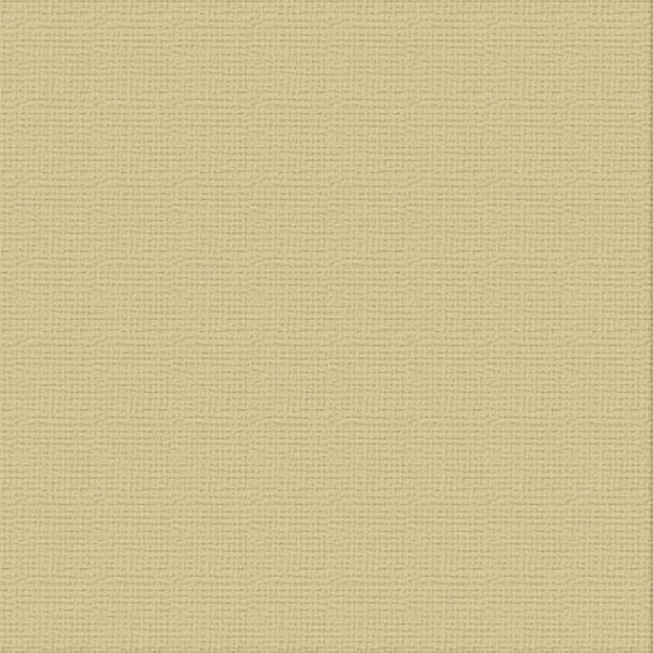 Cardstock - 12x12 - Driftwood (250gsm)