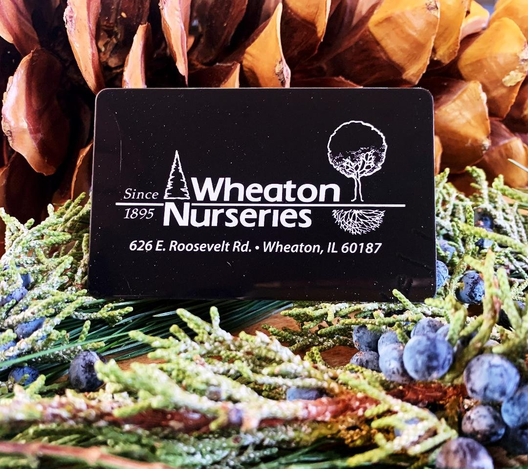 WHEATON NURSERIES GIFT CARD