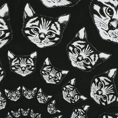 Catfinity - Black and White