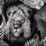 Lion Eyes-2883A