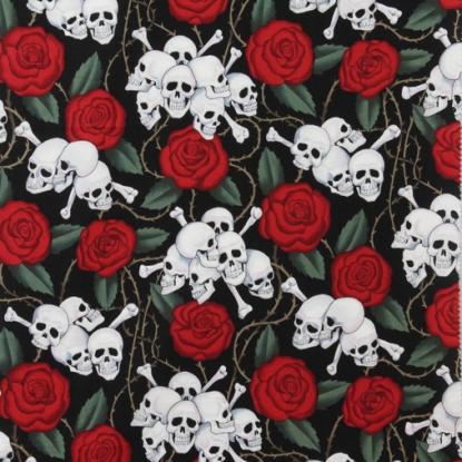 Skulls-1595AR