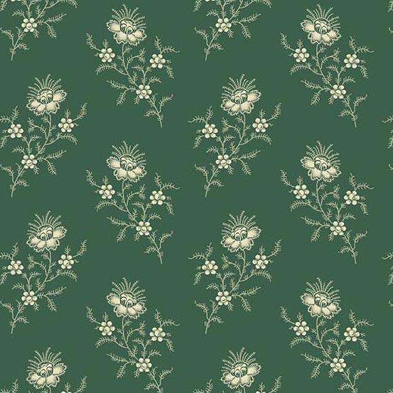 Evergreen Fern Spruce