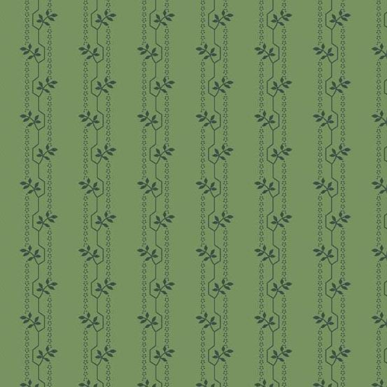 Evergreen Wander Spearmint