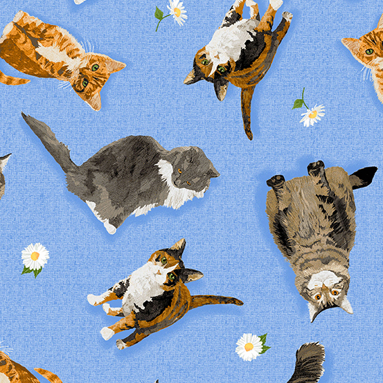 Meow Meadow - Tossed Cats
