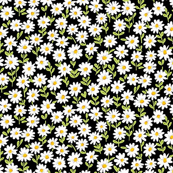 Andover Sunny Bee A-9432-K Daisy on Black