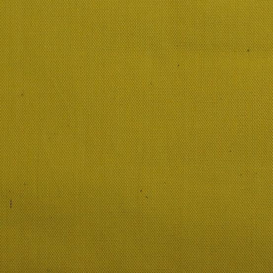 Kaleidoscope/Citrus (Alison Glass)