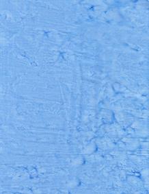 Lava Solids 100Q-1543 Tide